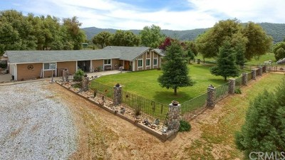 Ahwahnee Single Family Home For Sale: 45522 Sunrise Drive