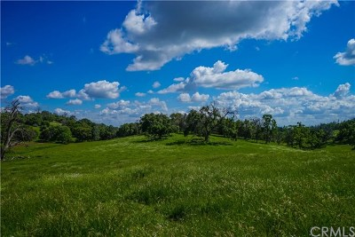 Mariposa Residential Lots & Land For Sale: 3220 Silver Bar