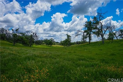 Mariposa Residential Lots & Land For Sale: 3224 Silver Bar