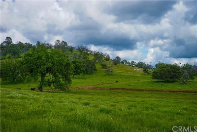 Mariposa Residential Lots & Land For Sale: 3221 Silver Bar