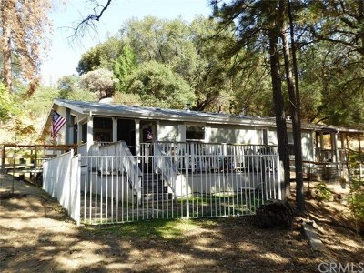 North Fork Single Family Home For Sale: 33105 Road 233