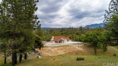 Oakhurst Single Family Home For Sale: 37828 China Creek Road