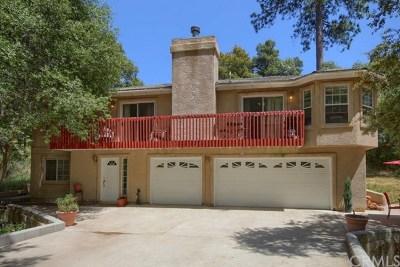 Oakhurst Single Family Home For Sale: 38575 Sierra Lakes Drive