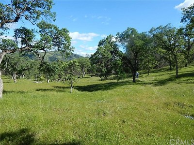 Catheys Valley Residential Lots & Land For Sale: 3722 S Old Highway South