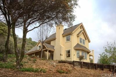 Bass Lake Single Family Home For Sale: 54861 Munson Lane