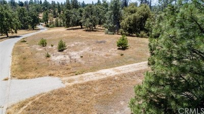 North Fork CA Residential Lots & Land For Sale: $135,000