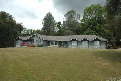 Coarsegold Single Family Home For Sale: 55145 Munson Lane