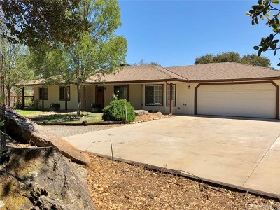 Coarsegold Single Family Home For Sale: 30901 Yosemite Springs