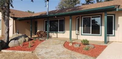 Coarsegold Single Family Home For Sale: 37101 Sundance Drive