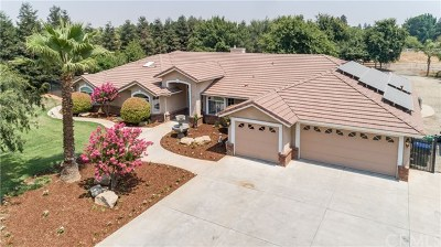 Clovis Single Family Home For Sale: 6912 N Leonard Avenue