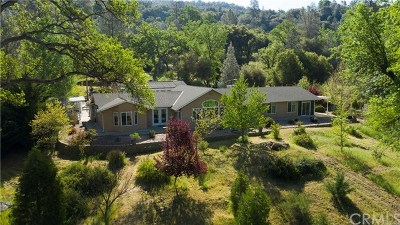 Oakhurst Single Family Home For Sale: 49880 Sierra Robles Drive