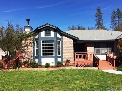 Coarsegold Single Family Home For Sale: 49015 Cavin Lane