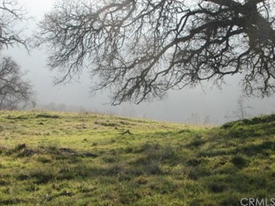 Mariposa County Residential Lots & Land For Sale: 5454 Pearce Ranch Road