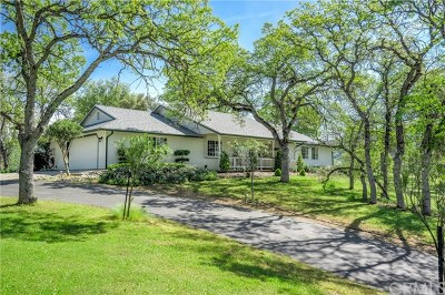 Coarsegold Single Family Home For Sale: 42065 River Knolls Place
