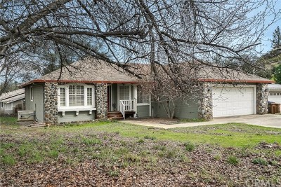 Kelseyville Single Family Home For Sale: 10561 Fairway Drive