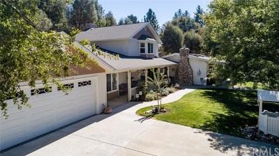 Oakhurst Single Family Home For Sale: 51052 Bon Veu Drive