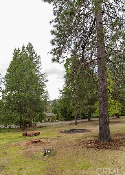 Mariposa Single Family Home For Sale: 5716 Coho Court