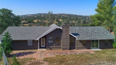 Coarsegold Single Family Home For Sale: 41144 Long Hollow Drive