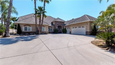 Single Family Home For Sale: 6663 Desert Springs Street