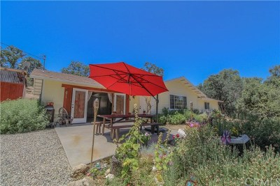 Coarsegold Single Family Home For Sale: 29130 Yosemite Springs