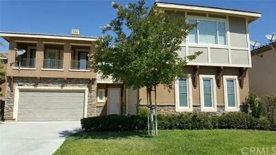 Riverside Single Family Home For Sale: 16689 S Peak Court