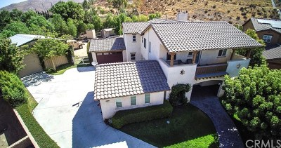 Norco Single Family Home For Sale: 3401 Cutting Horse Road