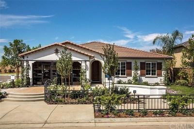 Menifee Single Family Home For Sale: 28065 Millstream Court