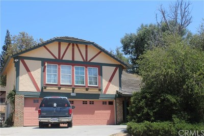 Norco Single Family Home For Sale: 3325 Valley View Avenue