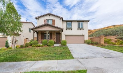 Lake Elsinore Single Family Home For Sale: 34308 Heather Ridge Road