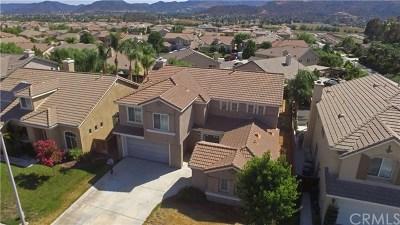 Wildomar Single Family Home For Sale: 22933 Nan Street