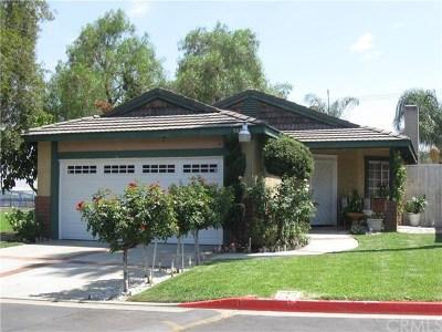 Rialto Single Family Home For Sale: 3017 Cardamon Street