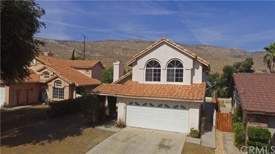 Moreno Valley Single Family Home For Sale: 9680 Sycamore Canyon