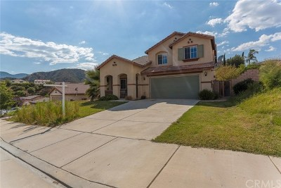 Lake Elsinore Single Family Home For Sale: 29435 Falling Leaf Drive