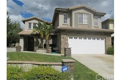 Corona Single Family Home For Sale: 2595 Camino Del Plata
