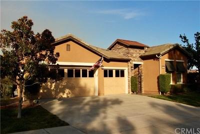 Corona Single Family Home For Sale: 9176 Larkspur Drive