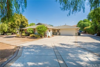 Norco Single Family Home For Sale: 4587 Pedley Avenue