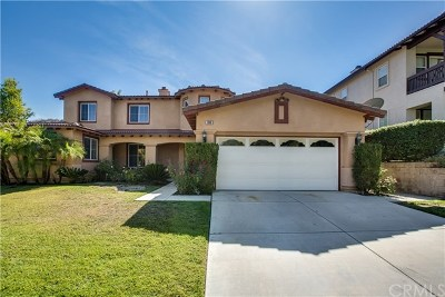 Corona Single Family Home For Sale: 1696 Tamarron Drive