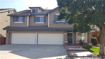 Corona Single Family Home For Sale: 22904 Briarwood Drive