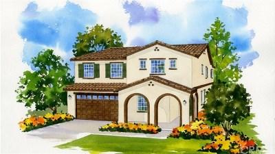Fontana Single Family Home For Sale: 6361 Waterstone Way