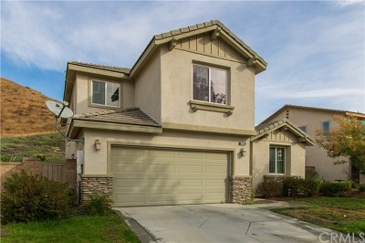 Lake Elsinore Single Family Home For Sale: 34128 Camelina Street