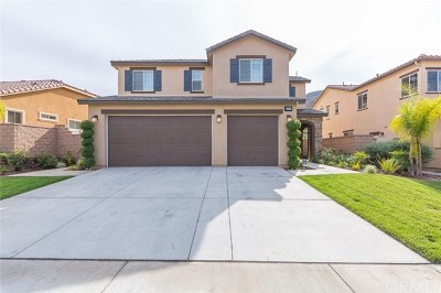 Lake Elsinore Single Family Home For Sale: 36419 Tansy Court