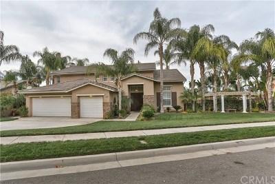 Corona Single Family Home For Sale: 3212 Chris Wren Circle