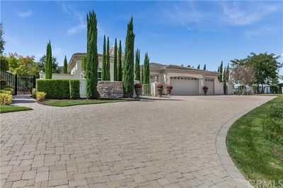 Corona Single Family Home For Sale: 4120 Strandberg Street