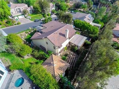 North Tustin Single Family Home For Sale: 19672 Vista Del Valle