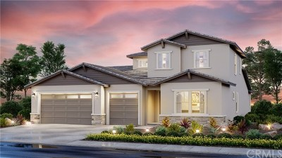 Menifee Single Family Home For Sale: 29574 Longship Drive