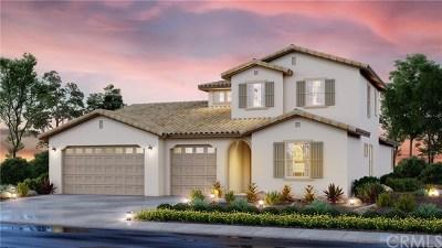 Menifee Single Family Home For Sale: 29573 Longship Drive