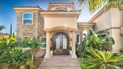 Riverside Single Family Home For Sale: 6902 Royal Hunt Ridge Drive