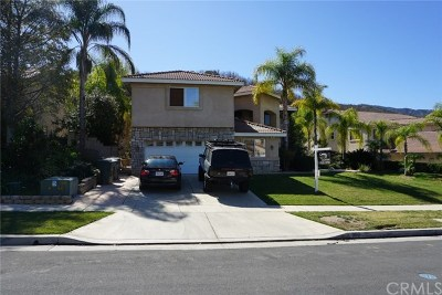 Corona Single Family Home For Sale: 850 Shepard Crest Drive