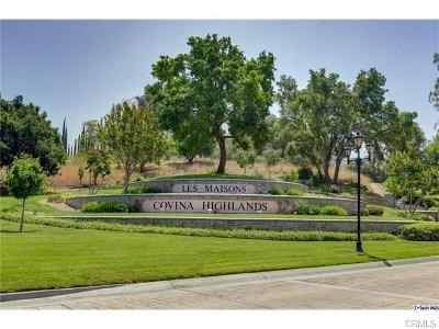 Covina Single Family Home For Sale: 2534 Martingail Drive