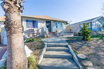 Lake Elsinore Single Family Home For Sale: 1207 W Heald Avenue